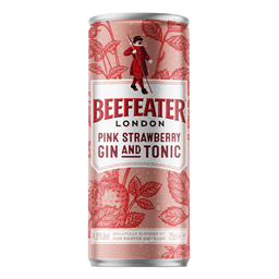 Gin i Tonic Beefeater Pink 0.25l