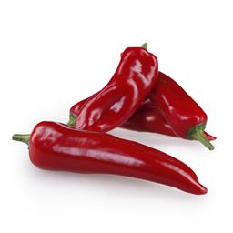 Paprika silja crvena domaca