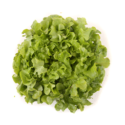 Salata Puterica domaca
