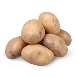 Krompir beli opran