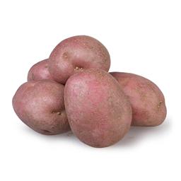 Krompir crveni opran