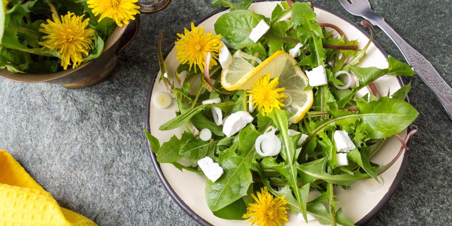 Maslačak salata sa sirom i lukom