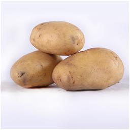 Krompir beli mladi domaci